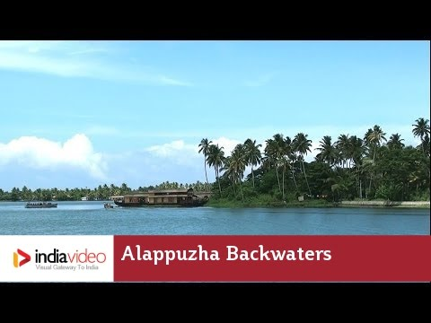 An amphibious life on Alappuzha backwaters