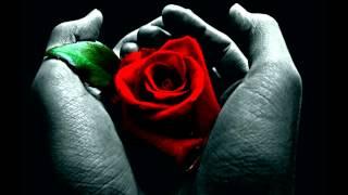 Scream Silence - Living In The Rose