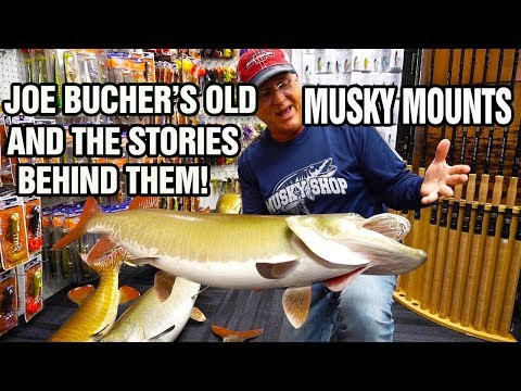 Joe Bucher's Old Musky Mounts And The Stories Behind Them!! Must See!!