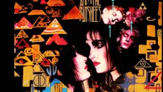 Watch Siouxsie  The Banshees Obsession video