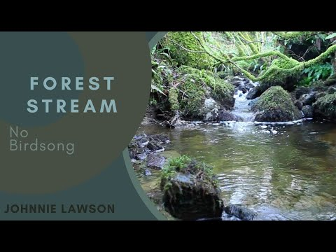 Relaxing Nature Sounds of Water Flowing over a tiny Waterfall for Calm Relaxation & Meditation