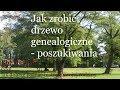 'Moje Drzewo Genealogiczne'
