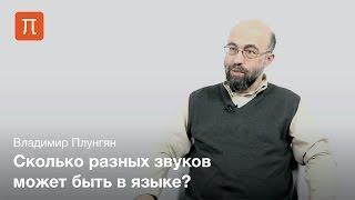 Владимир Плунгян - Фонетика языков мира