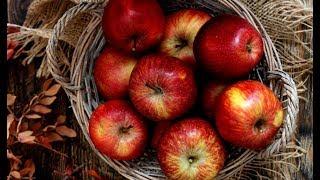 Рецепт яблочного самогона