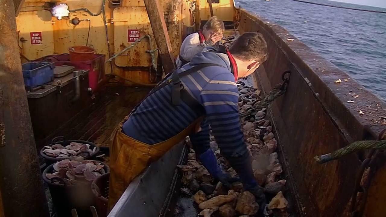 Les bleus de la mer: n'est pas marin pêcheur qui veut!