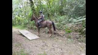 X-Treme Race Guilligomarc'h_8_juin_2014_La Bascule