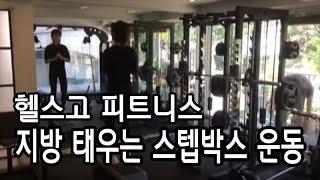 헬스고 ) 지방 ~~ 스텝박스로 뿌셔 뿌셔!!