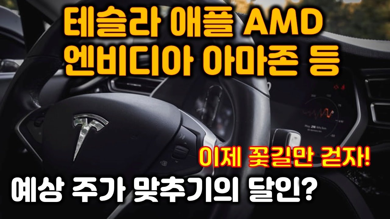 미국주식 테슬라 애플 AMD 엔비디아 아마존 페이스북 . 미국증시를 살펴봅니다.