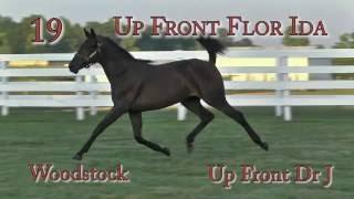 Up Front Flor Ida