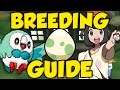 POKEMON SUN AND MOON BREEDING GUIDE! Best Pokemon Sun and Moon IVs and Hidden Ability Breeding