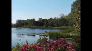 Brahms Die Schöne Magelone (Piano Solo)