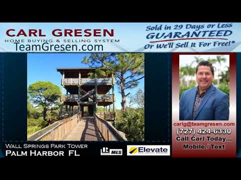 Top 1 Selling Agent inPalm Harbor Florida 34683