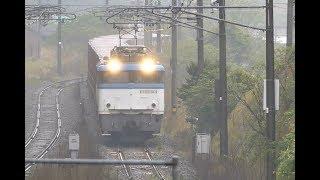 JR貨物1062レ EF81-501 鹿児島本線木場茶屋駅