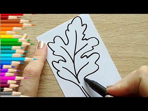 Как нарисовать ЛИСТ ДУБА / Мультик раскраска для детей ДУБОВЫЙ ЛИСТ / Нарисуй Ка
