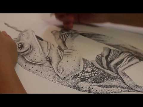 STIPPLING DRAWING: Frog