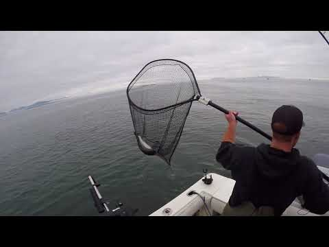 WCR- Fishing From Prince Rupert