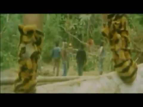 Film - Tarzan Raja Rimba ( Barry Prima )