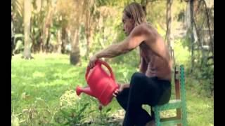 Iggy Pop - Everybody's Talkin' - (Fred Neil)