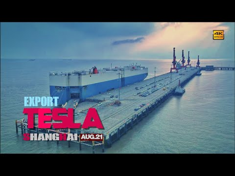 A shipment of Tesla Model 3s to be shipped overseas\Tesla shanghai\4K # 350