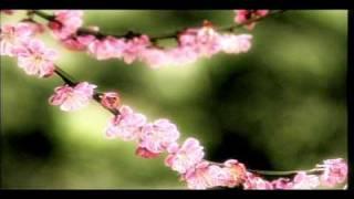 Смотреть клип Dolcenera - Piove