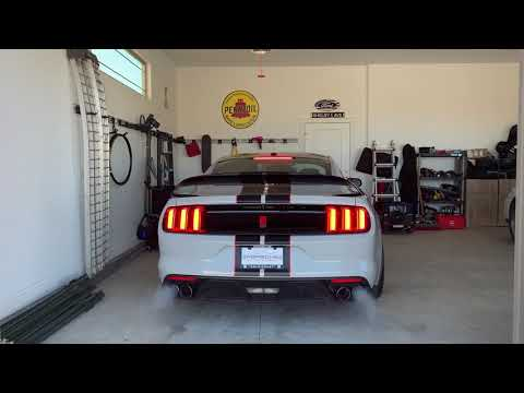 2017 Shelby GT350R Start Up - Beautiful Stock Exhaust!