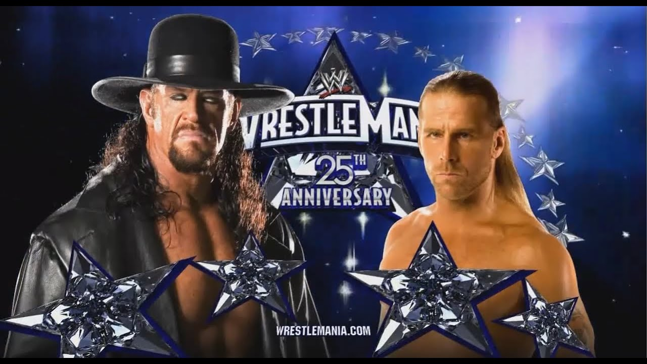 Image result for wrestlemania 25 the undertaker vs shawn michaels