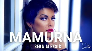 SEKA ALEKSIC  MAMURNA (OFFICIAL VIDEO)