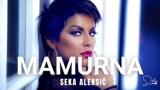 Смотреть клип Seka Aleksic - Mamurna