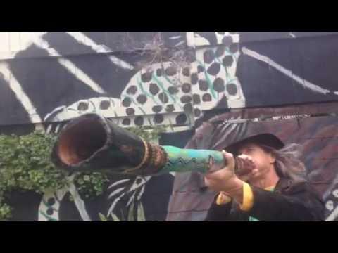Australian Aboriginal Didgeridoo 50 inch C#