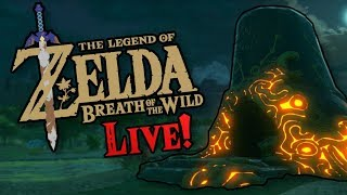 Breath of the Wild 120 Shrine Run!! Come and Chat!