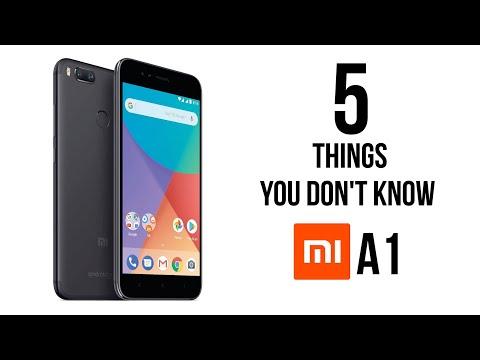 5 Hal Yang Kalian Tidak Ketahui Dari...