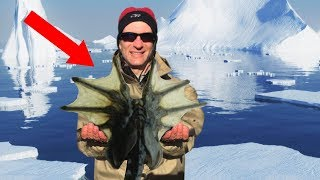 frozen in antarctica
