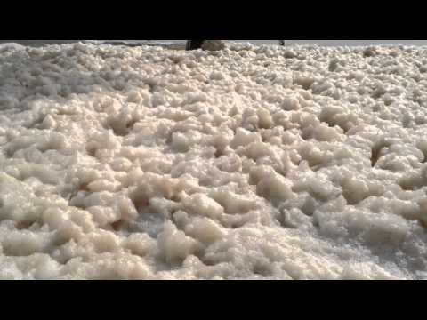 Sea Foam (disambiguation) at Mooloolaba Beach, Sunshine Coa