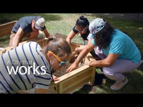 A City that works  - Pollinator Project