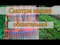 Чудо лопата, чудо вилы, легкокоп, лопата копалочка производства Украины