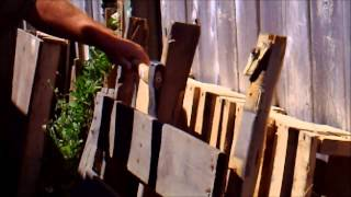 Making Things With Pallets