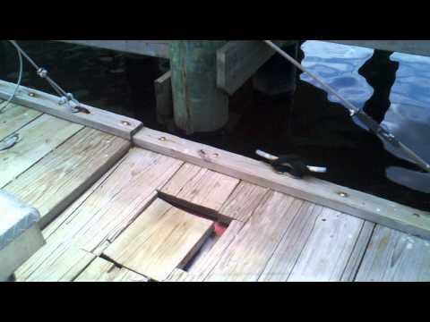 12x30 Dock Construction Barge - Bilge Pumps