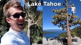 Video Emerald Bay in Lake Tahoe | Road Trip Day 3 | Evan Edinger Travel download MP3, 3GP, MP4, WEBM, AVI, FLV Oktober 2018