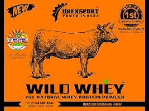 wild-whey-protein-powder-organic(natural)-drexsport-review