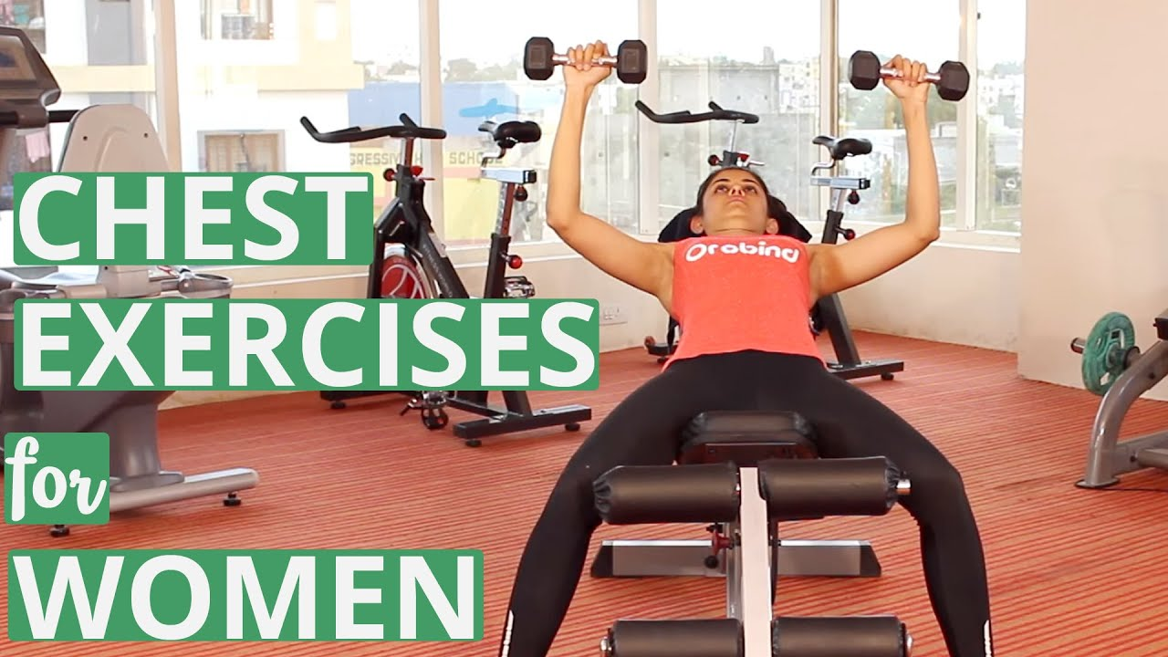 gym chest chair avenue six chairs exercises for women with dumbbells youtube