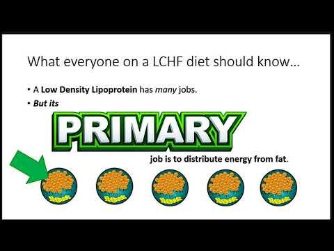 Dave Feldman at Ketofest 2017 - More Dietary Fat, Less Cholesterol
