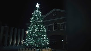 Love Newmarket | 2020 Virtual Christmas Light Switch On