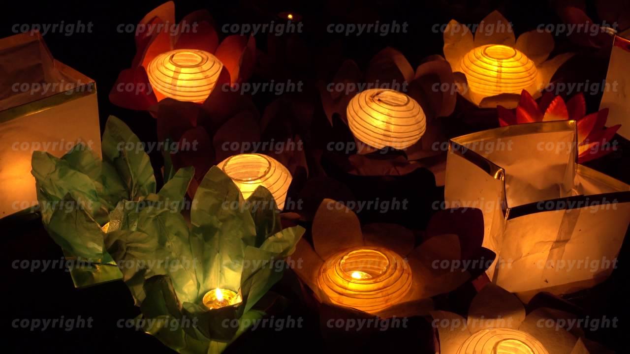 Floating Lotus Flower Paper Lanterns On Water Youtube