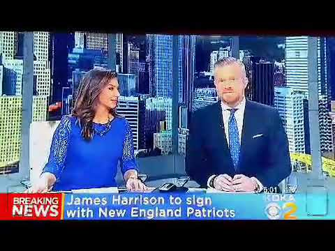 4990e8f9ca9 Breaking Sports news  James Harrison to sign with Patriots! - YouTube