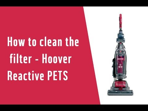 How to clean the filter - Hoover Reactive PETS (5483017)