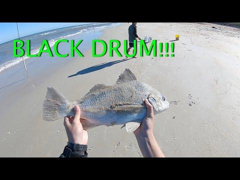 New Smyrna Beach, FL GREAT Pompano Fishing With Friends & Family