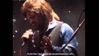 The Bee Gees Tribute - Live Demo