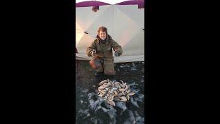 Бешенный клёв карася по первому льду 2019 2020 Рыбалка в Подмосковье Лучшая рыбалка