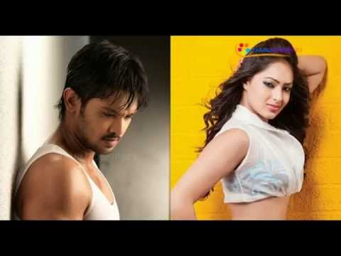 Fight between Nakul and Nikesha?