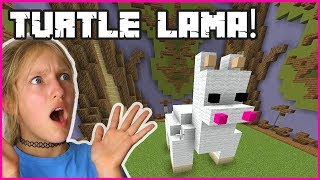 Turtle Lama Wins!